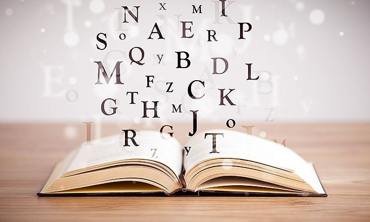 literaturka